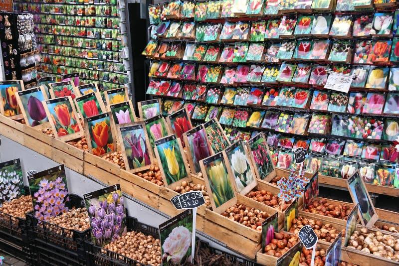 Αγορά βολβών λουλουδιών στοκ φωτογραφίες