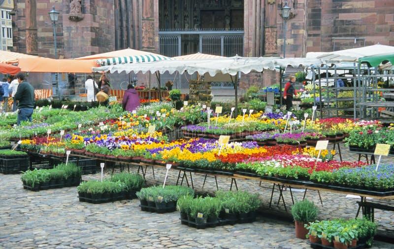 αγορά λουλουδιών στοκ εικόνες