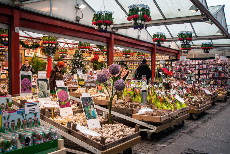 Αγορά λουλουδιών του Άμστερνταμ (Bloemenmarkt) στοκ φωτογραφία με δικαίωμα ελεύθερης χρήσης
