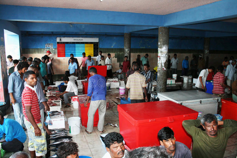 αγορά ψαριών στοκ εικόνα με δικαίωμα ελεύθερης χρήσης
