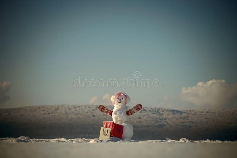 Αγοραστής χιονανθρώπων Χριστουγέννων στο μοντέρνο καπέλο και τη ρόδινη περούκα στοκ εικόνα