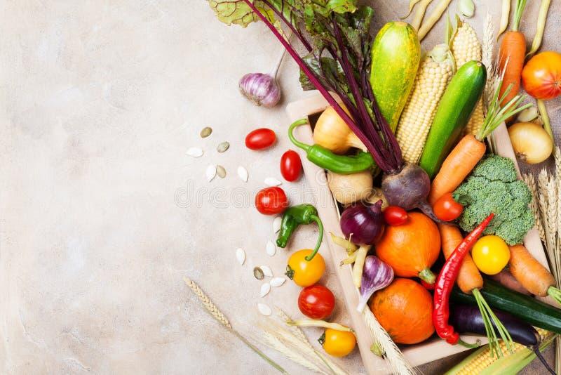 Αγροτικά λαχανικά φθινοπώρου και συγκομιδές ρίζας στην ξύλινη τοπ άποψη κιβωτίων Υγιής και οργανική τροφή στοκ εικόνα με δικαίωμα ελεύθερης χρήσης