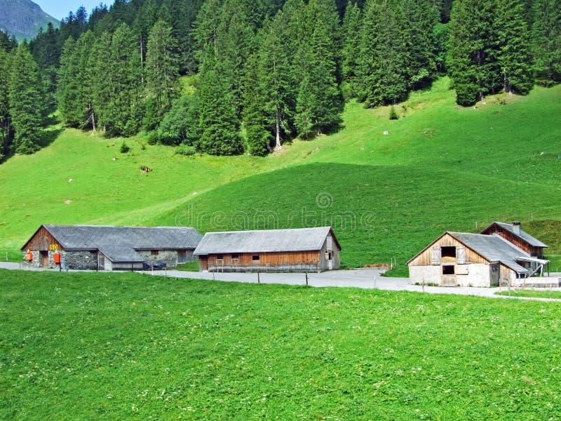 Αγροτικά παραδοσιακά αγροκτήματα αρχιτεκτονικής και ζωικού κεφαλαίου στην αλπική κοιλάδα Sernftal στοκ φωτογραφίες με δικαίωμα ελεύθερης χρήσης