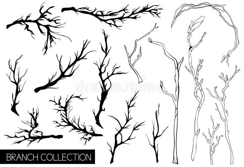 Αγροτική διακοσμητική συλλογή εγκαταστάσεων και λουλουδιών Συρμένα χέρι εκλεκτής ποιότητας διανυσματικά στοιχεία σχεδίου ελεύθερη απεικόνιση δικαιώματος