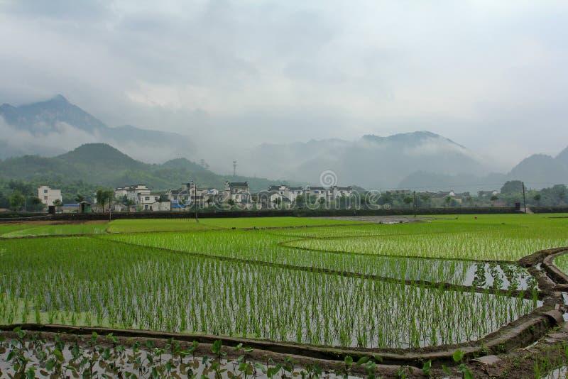 αγροτική ζωή χαρακτηρισμένος από το huizhou στοκ εικόνες
