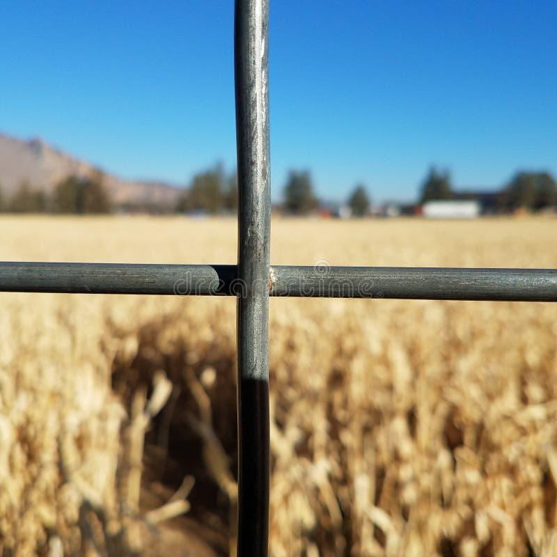 Αγροτική ζωή στοκ φωτογραφίες με δικαίωμα ελεύθερης χρήσης