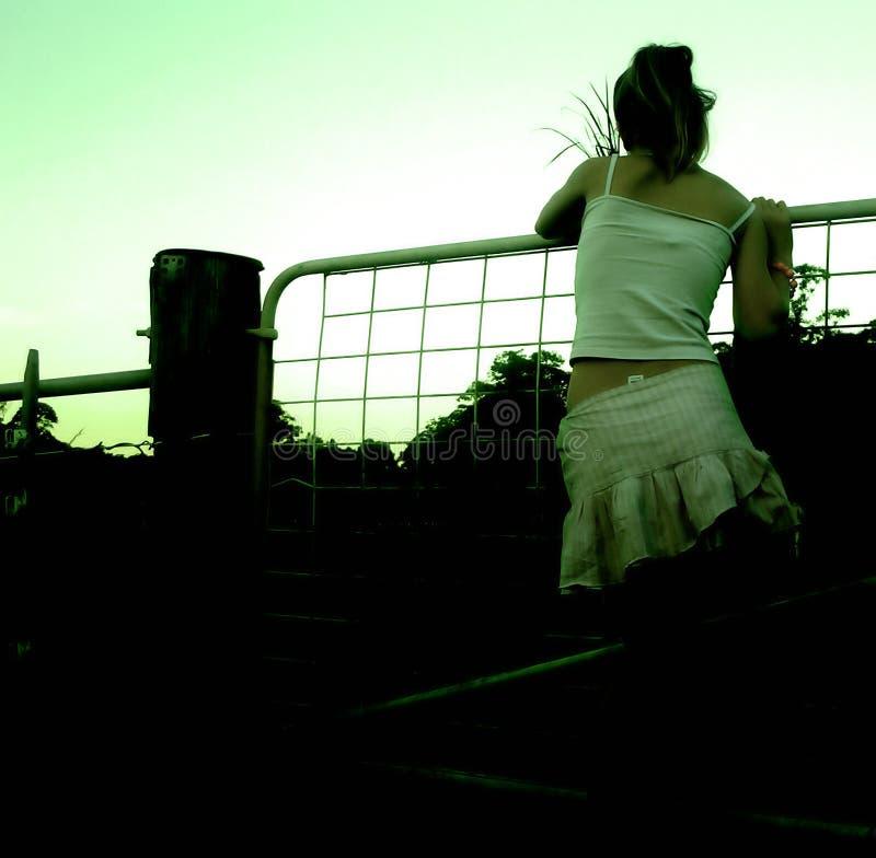αγροτική πύλη Στοκ Φωτογραφίες