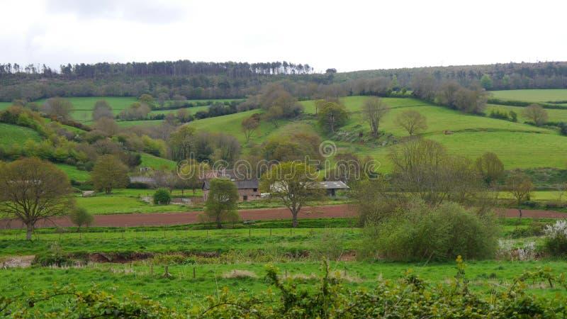 Αγροτική σκηνή ανοίξεων επαρχία της νοτιοδυτικής Αγγλίας του Devon στοκ φωτογραφίες