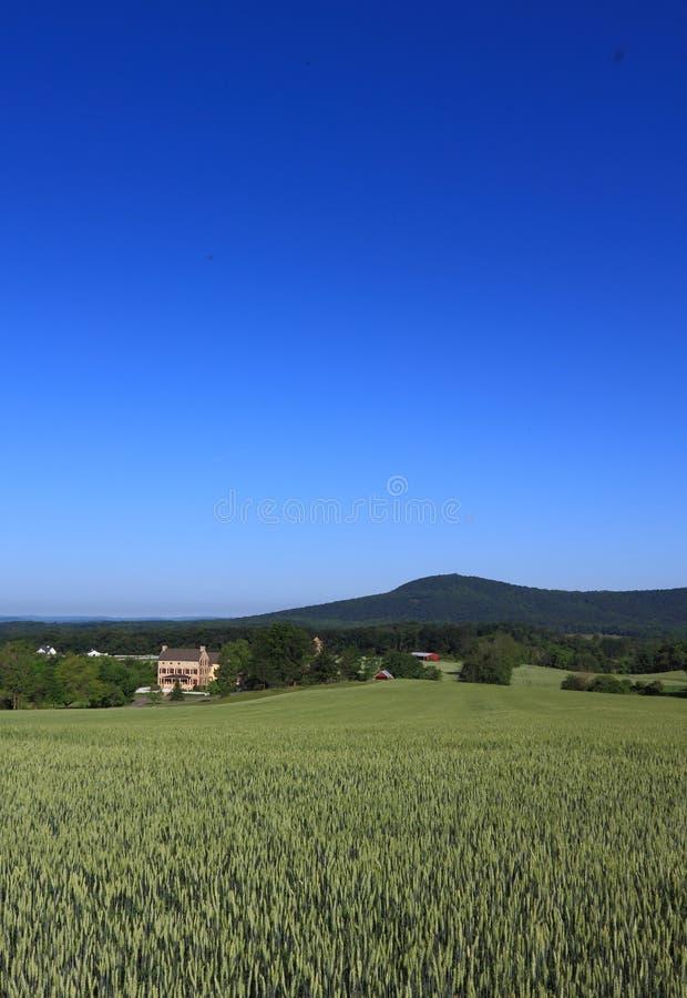 αγροτική σκηνή στοκ εικόνα με δικαίωμα ελεύθερης χρήσης