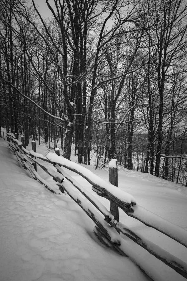 Αγροτική χειμερινή σκηνή με το φράκτη στοκ εικόνες με δικαίωμα ελεύθερης χρήσης