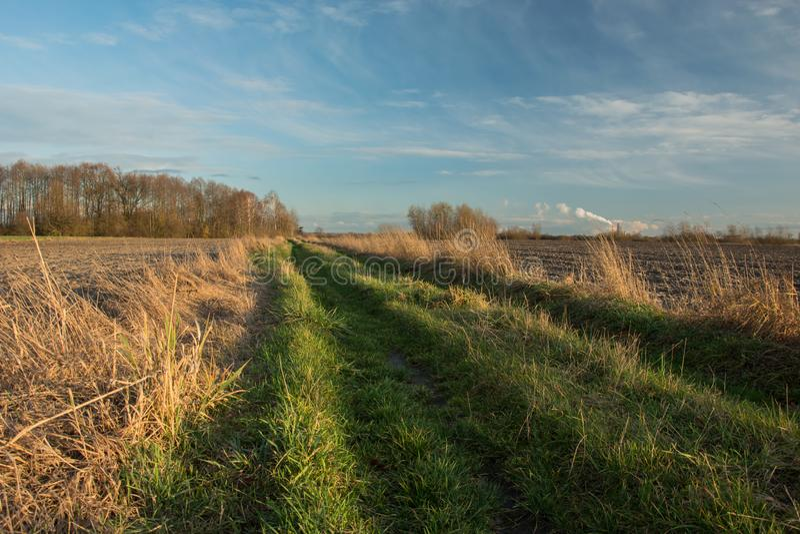 Αγροτικός δρόμος με τη χλόη, οργωμένοι τομείς, ένα copse με τα δέντρα χωρίς φύλλα και τα σύννεφα σε έναν ουρανό στοκ φωτογραφία με δικαίωμα ελεύθερης χρήσης
