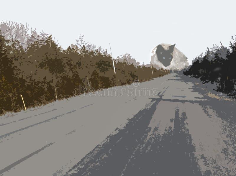 Αγροτικός δρόμος με τη γάτα τεράτων στοκ εικόνες