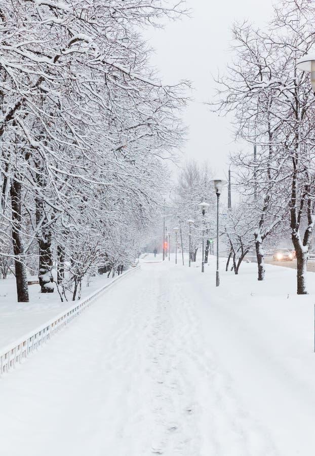 Αγροτικός δρόμος στο χιόνι στην ημέρα στοκ εικόνες με δικαίωμα ελεύθερης χρήσης