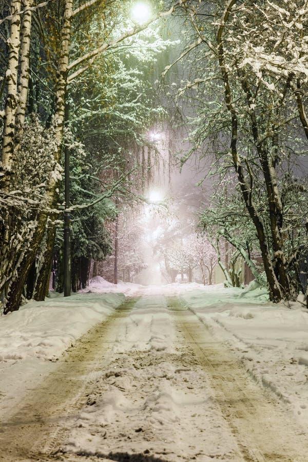 Αγροτικός δρόμος στο χιόνι τη νύχτα στοκ φωτογραφία