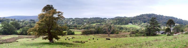 Αγροτικό καλλιεργήσιμο έδαφος στο Ντέβον κοντά σε Dartmoor στοκ εικόνες με δικαίωμα ελεύθερης χρήσης