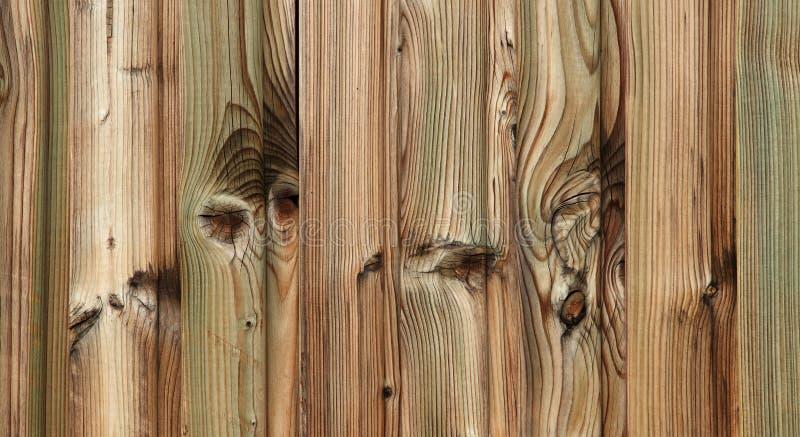 αγροτικό πράσινο δάσος λ&eps στοκ φωτογραφία με δικαίωμα ελεύθερης χρήσης
