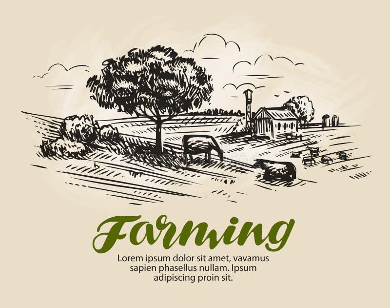 Αγροτικό σκίτσο Αγροτικό τοπίο, γεωργία, διανυσματική απεικόνιση καλλιέργειας ελεύθερη απεικόνιση δικαιώματος