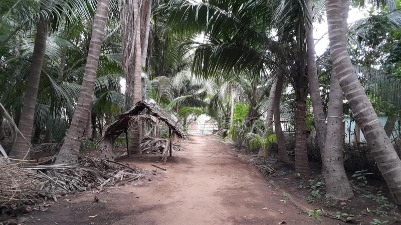 Αγροτικό σπίτι Vanathirajapuram στην Ινδία στοκ εικόνες