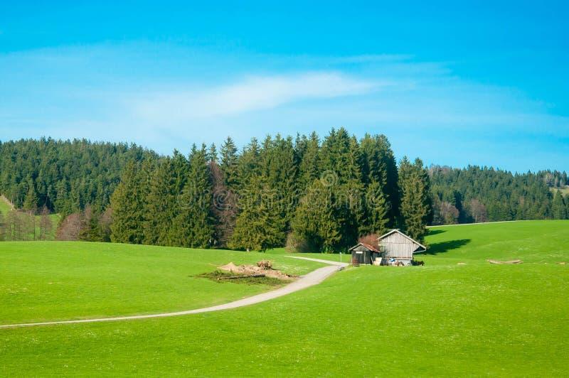 Αγροτικό τοπίο ενός πράσινου τομέα στη Βαυαρία Γερμανία στοκ εικόνα