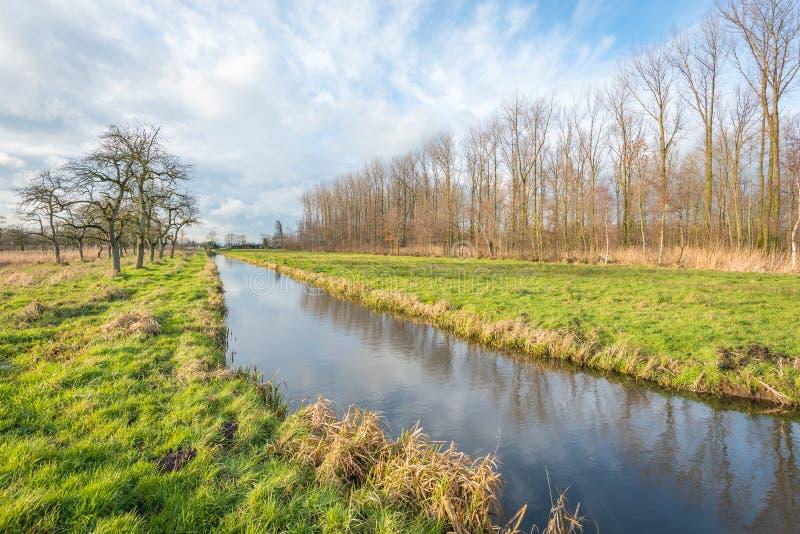 Αγροτικό τοπίο με τα γυμνά δέντρα και ένα μικρό ρεύμα στοκ εικόνες