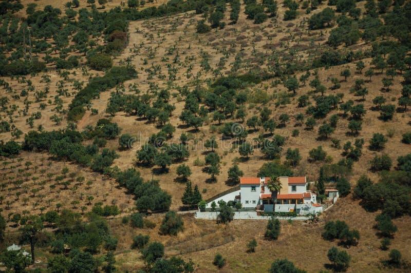 Αγροτικό τοπίο με τη μικρά αγροικία και τα δέντρα στοκ φωτογραφία