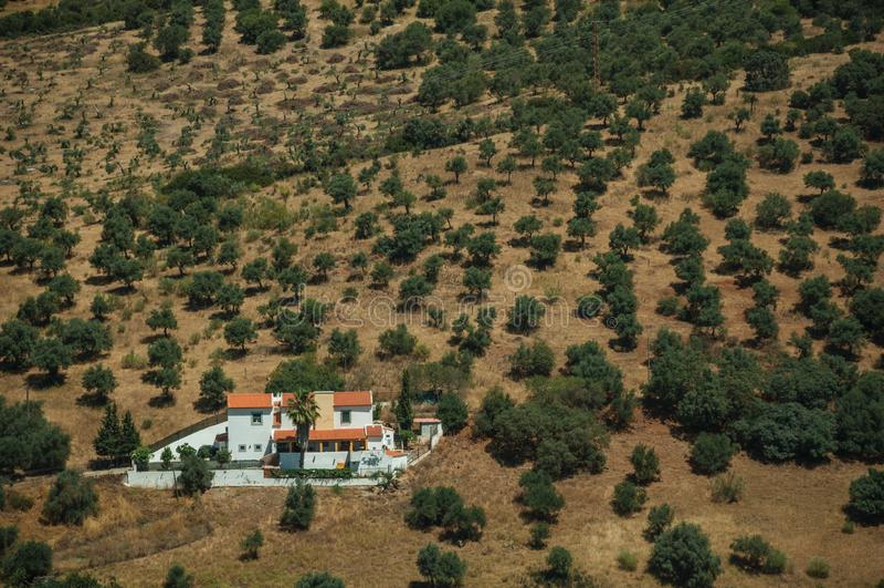 Αγροτικό τοπίο με τη μικρά αγροικία και τα δέντρα στοκ εικόνα με δικαίωμα ελεύθερης χρήσης