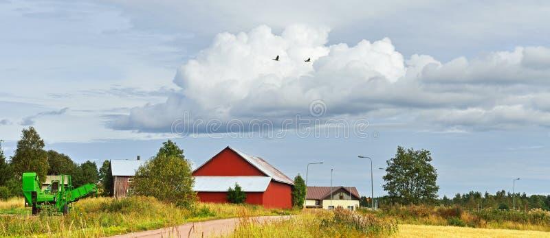 Αγροτικό τοπίο με τους πετώντας γερανούς στοκ φωτογραφία με δικαίωμα ελεύθερης χρήσης
