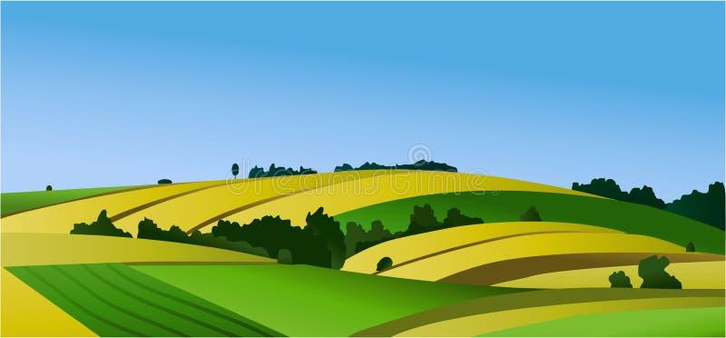 Αγροτικό τοπίο με τους πράσινους τομείς ελεύθερη απεικόνιση δικαιώματος