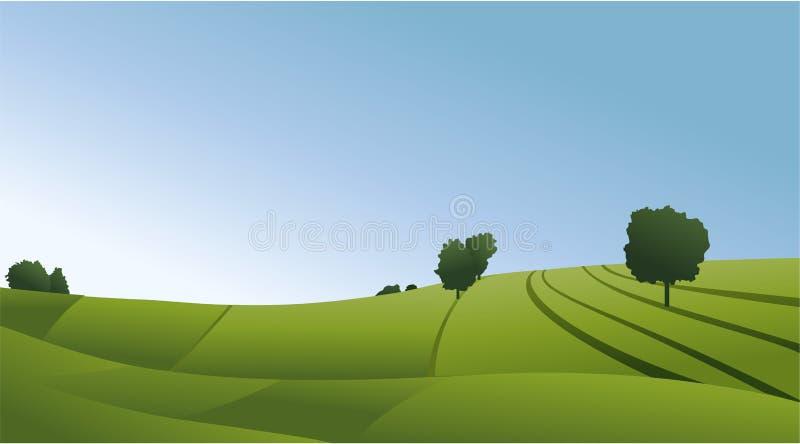 Αγροτικό τοπίο με τους πράσινους τομείς απεικόνιση αποθεμάτων