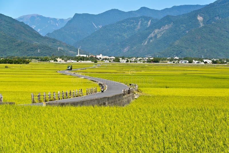 Αγροτικό τοπίο της Ταϊβάν στοκ εικόνα
