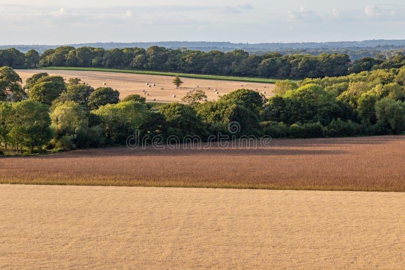 Αγροτικό τοπίο του Σάσσεξ στοκ εικόνα με δικαίωμα ελεύθερης χρήσης