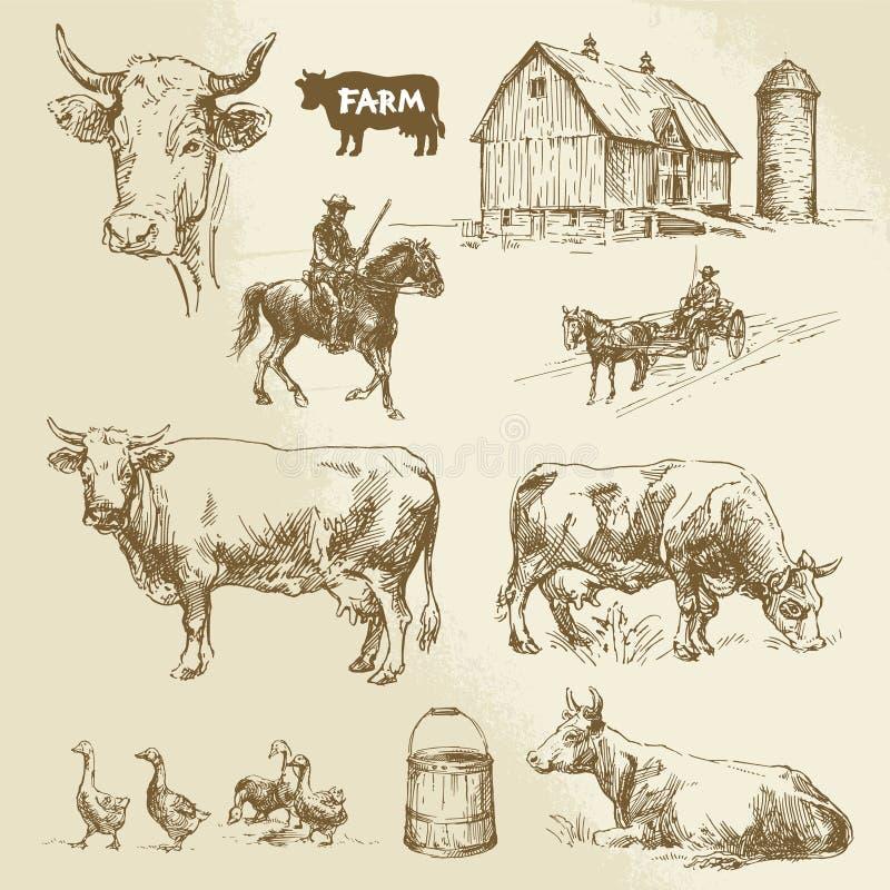 Αγρόκτημα, αγελάδα, γεωργία απεικόνιση αποθεμάτων