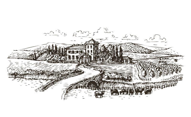 Αγρόκτημα, γεωργία ή σκίτσο αμπελώνων Εκλεκτής ποιότητας διανυσματική απεικόνιση τοπίων ελεύθερη απεικόνιση δικαιώματος