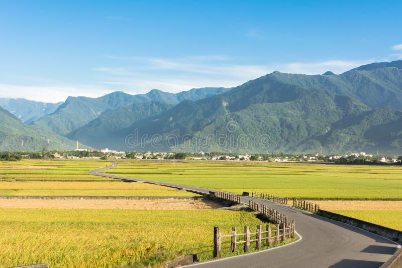 Αγρόκτημα και εθνική οδός ορυζώνα στοκ εικόνα με δικαίωμα ελεύθερης χρήσης