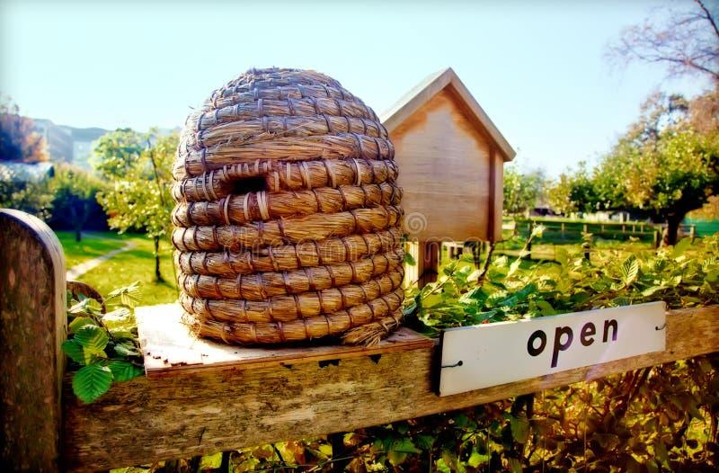 αγρόκτημα μελισσών εποχιακό στοκ εικόνες με δικαίωμα ελεύθερης χρήσης