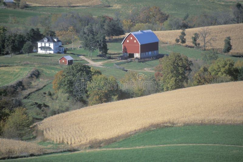 Αγρόκτημα με τα κυλώντας πεδία στοκ φωτογραφίες