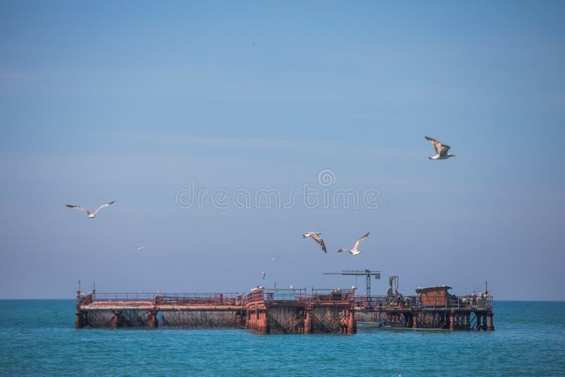 Αγρόκτημα μυδιών στη Μαύρη Θάλασσα στοκ εικόνες