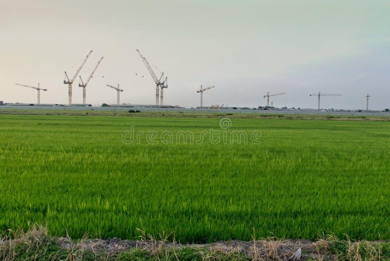 Αγρόκτημα ρυζιού με την κατασκευή στοκ εικόνες με δικαίωμα ελεύθερης χρήσης
