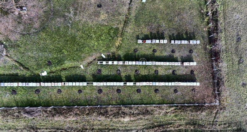 Αγρόκτημα της κυψέλης στο χωριό SIC, Τρανσυλβανία, Ρουμανία εναέρια όψη στοκ φωτογραφία με δικαίωμα ελεύθερης χρήσης