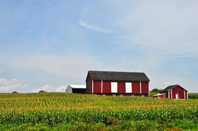 Αγρόκτημα της Μέρυλαντ στοκ εικόνες με δικαίωμα ελεύθερης χρήσης