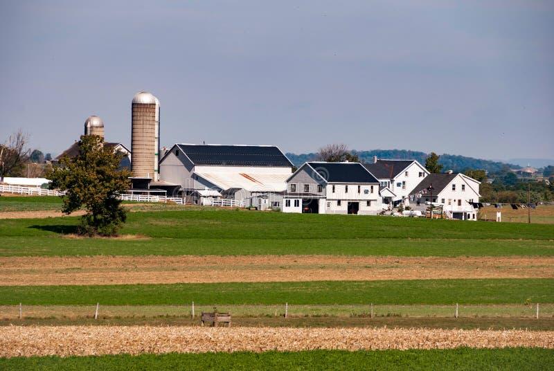 Αγρόκτημα Amish την ηλιόλουστη ασυννέφιαστη ημέρα στοκ φωτογραφία