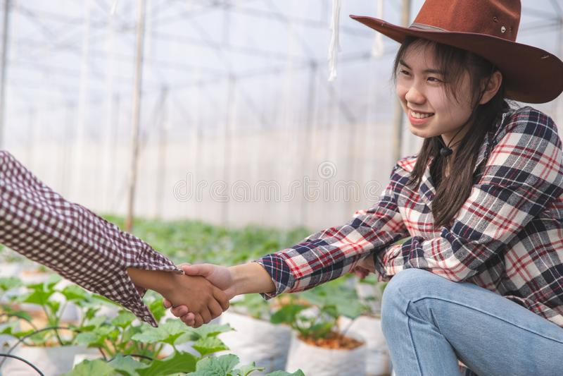 Αγρότες που τινάζουν τα χέρια σε ένα αγρόκτημα πεπονιών, συμφωνία του αγρότη Έννοια επιχειρησιακών συμβάσεων γεωπόνων γεωργίας στοκ εικόνα με δικαίωμα ελεύθερης χρήσης