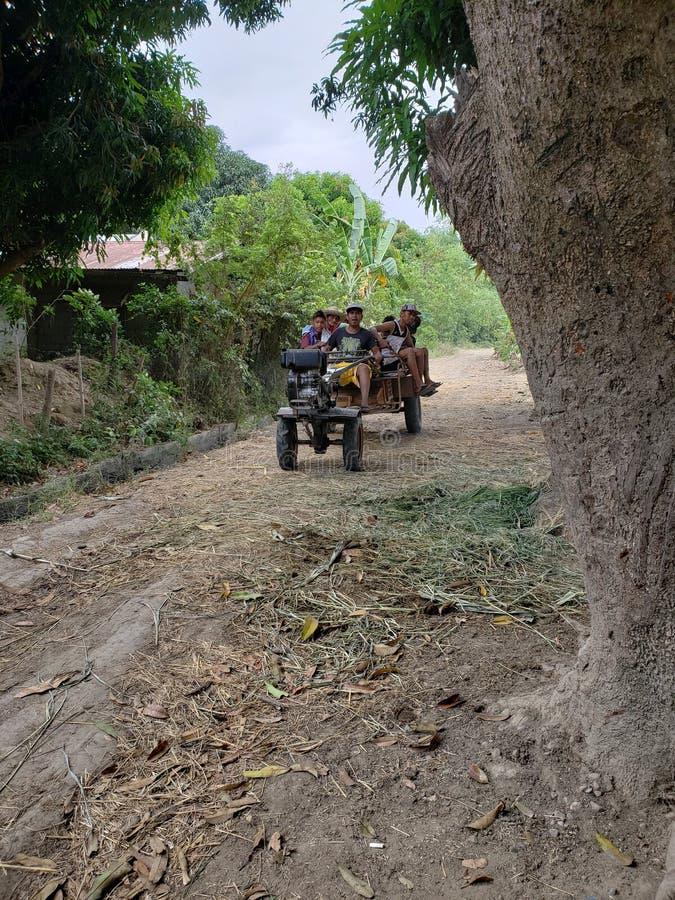 Αγρότες ρυζιού στοκ εικόνα με δικαίωμα ελεύθερης χρήσης