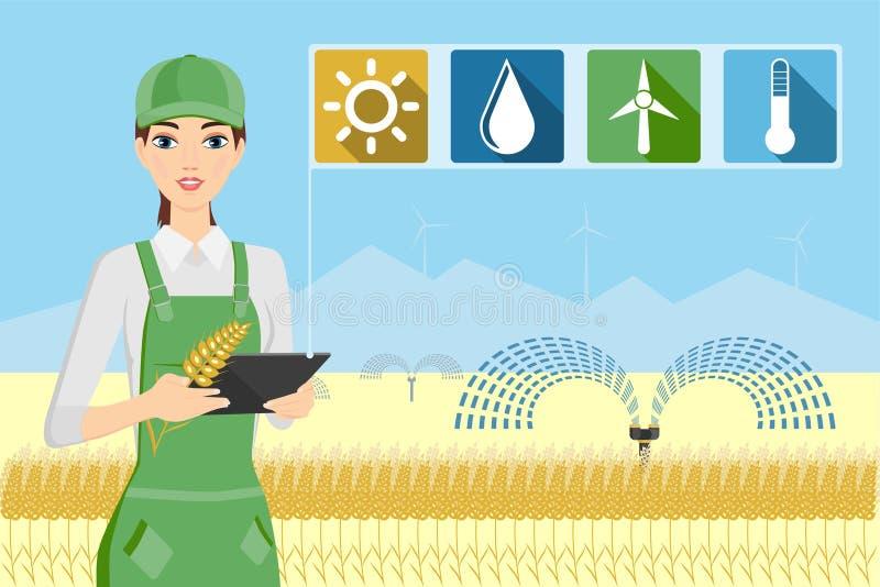 Αγρότης γυναικών με την ταμπλέτα σε έναν τομέα σίτου ελεύθερη απεικόνιση δικαιώματος