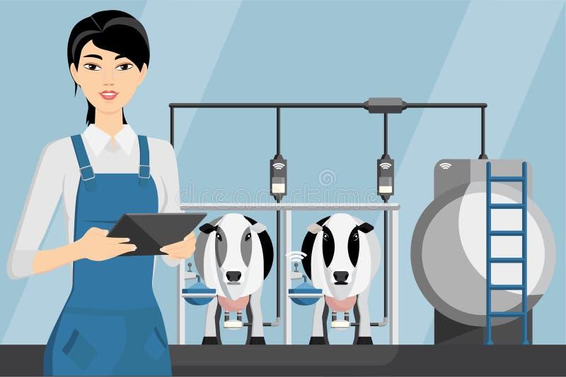 Αγρότης γυναικών σε ένα σύγχρονο γαλακτοκομικό αγρόκτημα ελεύθερη απεικόνιση δικαιώματος