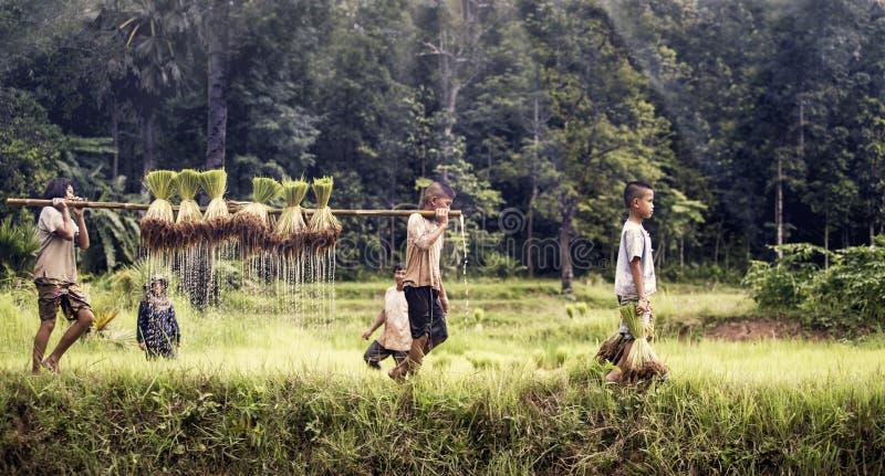 Αγρότης μικρών παιδιών και κοριτσιών στοκ φωτογραφίες με δικαίωμα ελεύθερης χρήσης