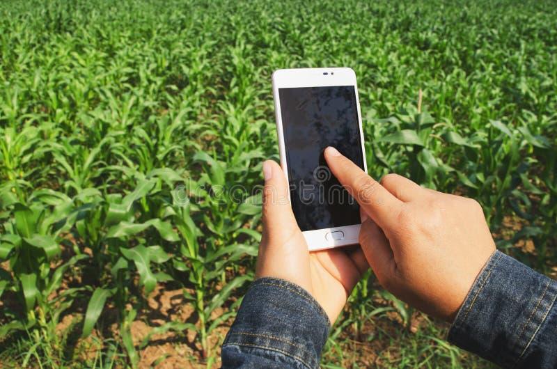 αγρότης χεριών με το κινητό τηλέφωνο στοκ εικόνες