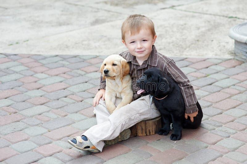 Αγόρια που παίζουν με δύο σκυλιά Λαμπραντόρ γραπτό στοκ φωτογραφίες με δικαίωμα ελεύθερης χρήσης