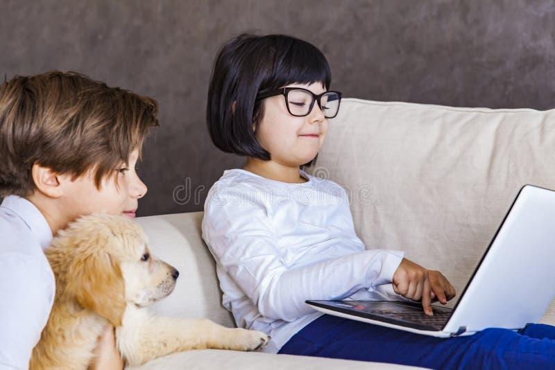 Αγόρι και μικρό κορίτσι εφήβων με το σκυλί που εξετάζουν το lap-top στοκ εικόνες