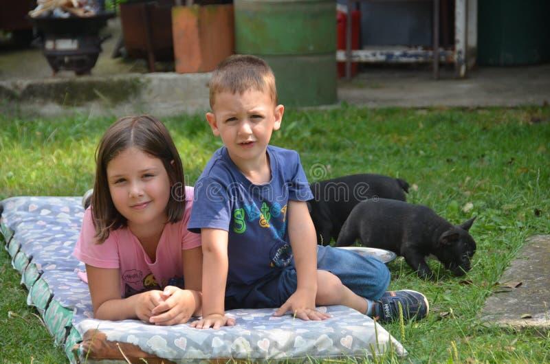 Αγόρι, κορίτσι, σκυλιά στοκ φωτογραφία με δικαίωμα ελεύθερης χρήσης